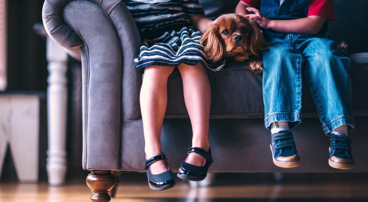 Warum ein Hund gut für introvertierte Menschen ist